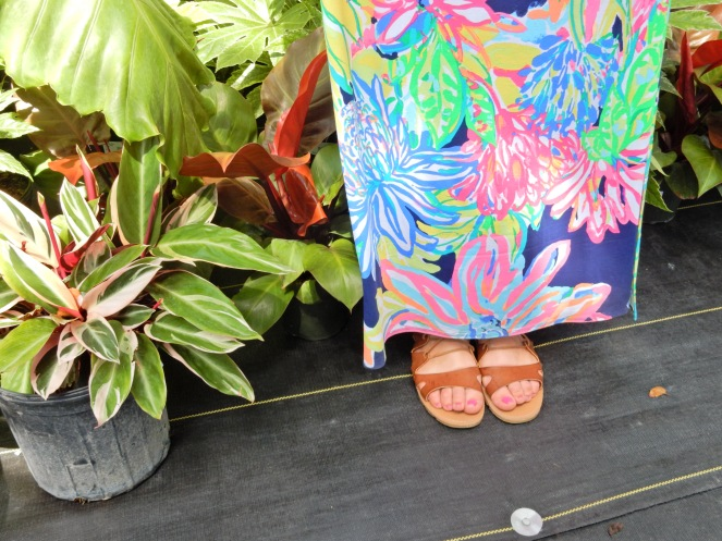 Island Home, Islamorada, Florida Keys, www.lillypulitzer.com, Lilly Pulitzer, Travelers Palm, Resort Navy Travelers Palm, MANSI CROP TOP & MAXI SKIRT SET, Lilly Pulitzer crop top, Lilly Pulitzer skirt, Sarah In Style, sarahinstyle.com, Sarah Meyer, Islamorada, Island Home, Florida Keys, Tropical style, vacation style, vacation fashion, summer style, #wcbcstyle, Chicago blogger, fashion blogger, windy city bloggers