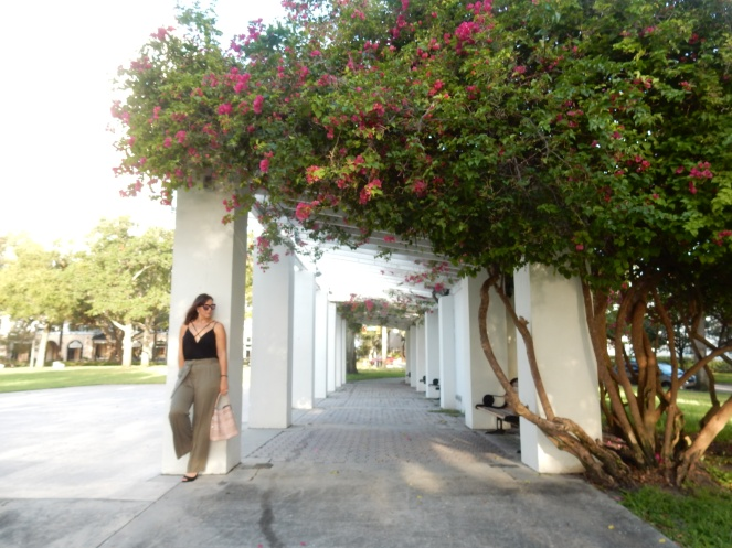 Vivian Black Bodysuit, Black Bodysuit, Bodysuit, Tobi, High Waist Pants, High Wasited Pants, Marine Layer, Ivy Pant, Worn Olive, Nectar Sunglasses, Nectar, Hula Sunglasses, Nectar Hula, Sarah In Style, The Vinoy Marriott St. Petersburg, Marriott Florida, Best High wasited pants, fashion blog, fashion blogger