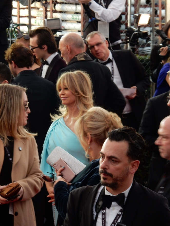 Goldie Hawn, fashion blogger, style blogger, sarah in style, Sarah Meyer, SAG Awards, Screen Actors Guild, SAG Red Carpet, SAG Afterparty, SAG red carpet experience, SAG bleachers, Awards season, celebrity fashion, best dressed, E red carpet, People style, best of the SAG Awards