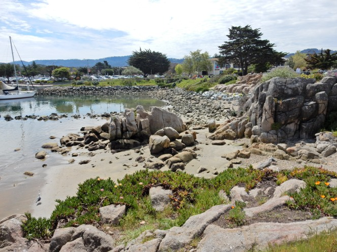 gorgeous california coastline, california coast, California's Hidden Gems, hyatt regency monterey best chowder in California, great whale watching, where to go whale watching, guide to Montery, Where to stay in Monterey, Monterey County sightseeing, California vacation planning, Drive along PCH1, pacific coast highway vacations, Sarah in Style, northern california tips, Sarah Meyer, blogger guide to california, downtown carmel, pacific coast highway, california road trip planning, california road trip