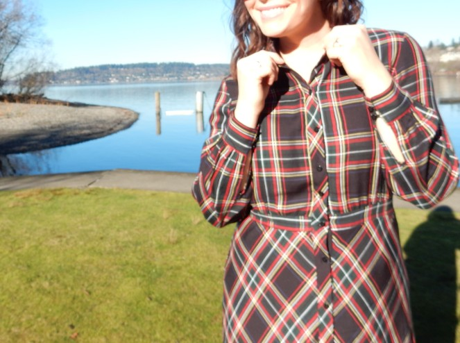 plaid dress, h&m plaid dress, plaid is rad, pretty in plaid, winter plaid, how to wear plaid, cool plaid pieces, plaid fashion, Renton WA, Renton Washington, Vince Camuto, Vince Camuto Brown Boots, Soft Surroundings, Sarah In Style, Sarah Meyer, Winter fashion advice, what to wear this winter
